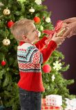 Boy Holding Present In Front Of Christmas Tree Royalty Free Stock Photography