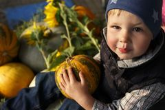 The boy is holding a pumpkin, the harvest royalty free stock photos