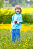 Boy Holding Red Apple in the Garden Stock Images