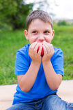 Boy holding red apple by two hands. And eating it royalty free stock photography