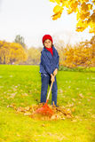 Boy holding red rake to clean autumn leaves Royalty Free Stock Photo