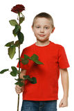 Boy holding the red rose Royalty Free Stock Photography