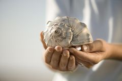 Boy holding seashell. Royalty Free Stock Photography