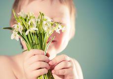 Boy holding snowdrops Stock Images