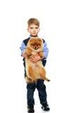Boy holding spitz Stock Photo
