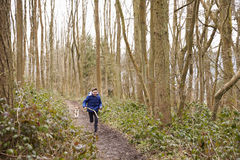 Boy holding stick running through a wood followed by pet dog Royalty Free Stock Photo