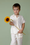 Boy holding sunflower. Portret of a young boy holding sunflower royalty free stock photography