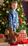 Boy Holding Teddy Bear In Front Of Christmas Tree Royalty Free Stock Images