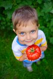 Boy holding a tomato Royalty Free Stock Photos