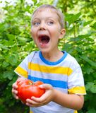 Boy holding a tomato Stock Photo