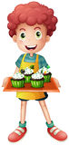 A boy holding a tray of cupcakes Stock Photos