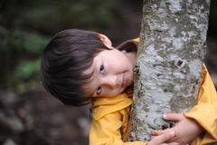 Boy holding a tree Stock Image