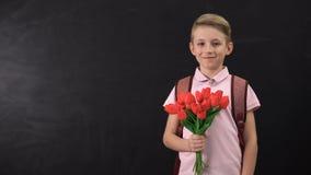 Boy holding tulips standing near chalkboard, congratulating teacher, first love. Stock footage stock footage