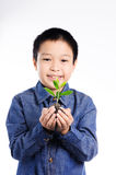 Boy holding young plant in hands above soil Royalty Free Stock Photography