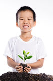 Boy holding young plant in hands above soil Stock Photos