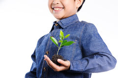 Boy holding young plant on his heart Royalty Free Stock Image