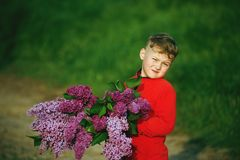 The boy holds a bouquet of lilacs. A boy with a bouquet of lilacs Stock Image