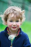 Boy holds a dandelion in hands royalty free stock images