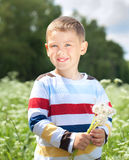 Boy  holds a dandelions in hands Stock Images