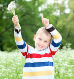 Boy  holds a dandelions in hands Stock Photography