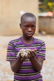 Boy holds fish. A boy holds a handful of fish known as omena around the Lake Victoria region of East Africa Stock Photography