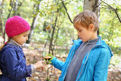 Boy holds green leaf and shows it to girl. Boy in blue jacket holds green leaf and toadstool and shows it to girl in autumn forest royalty free stock images