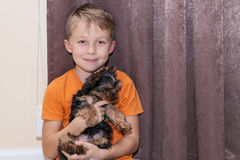 Boy holds puppy in hands Stock Photography