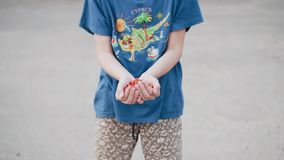 The boy holds Rowan berries in his hands and throws them up. Cool funny frame. The camera is in motion. stock video footage