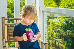 The boy holds smoothies from a dragon fruit with a mint leaf and a drinking straw stock photo