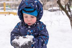 The boy holds snow in hands Stock Photos