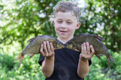 Boy holds two fish bream Stock Image