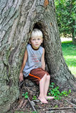 Boy In Hollow Tree. A young boy sitting in the hollow of a tree royalty free stock photo