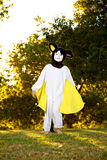 Boy In A Homemade Bat Costume. A young boy in a homemade bat costume stands in a park in the late afternoon light Royalty Free Stock Image