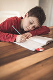 Boy with homework Stock Image