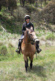 Boy and horse. Horse ridding in the green outback Royalty Free Stock Photo