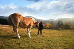 Boy and horse Royalty Free Stock Images
