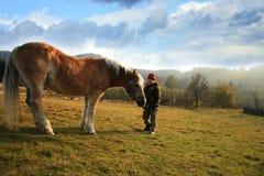 Boy and horse Royalty Free Stock Photos