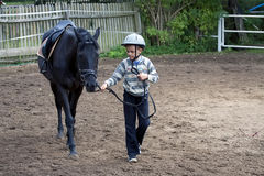 Boy with a horse royalty free stock photography