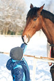 Boy and horse Stock Image