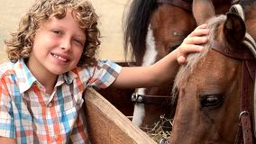 Boy At Horse Farm stock video