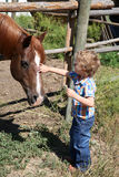 Boy and horse Royalty Free Stock Photos