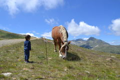 A boy and a horse. Pyrenees.Mountains. stock image