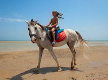A boy on horseback Stock Photos