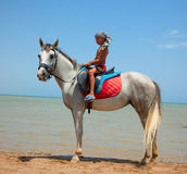 A boy on horseback. Rides on the beach stock photos