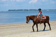 Boy riding a horse on the beach Royalty Free Stock Images