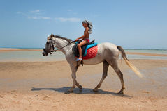 A boy on horseback. Rides on the beach royalty free stock photos