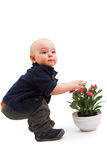 Boy with house plant Royalty Free Stock Photos