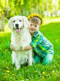 Boy hugging golden retriever. On sumer green grass royalty free stock image