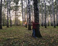 The boy is hugging a tree royalty free stock photography