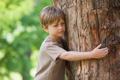 Boy hugging a tree at park Royalty Free Stock Images